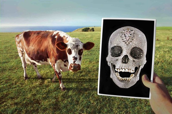 by Marcos Lopez Cow skull Normandie 2010